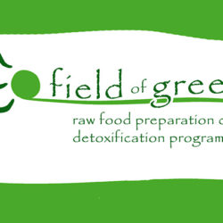 field of greens: web design