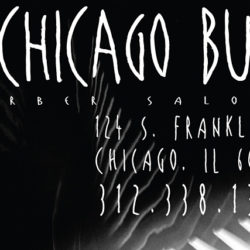 chicago buzz salon: web