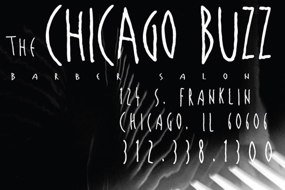 chicago buzz salon: web