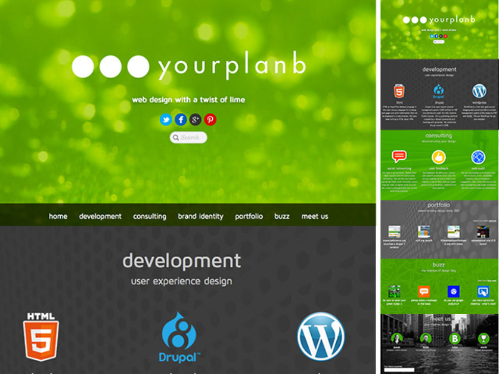 Your Plan B website remodel (2014)